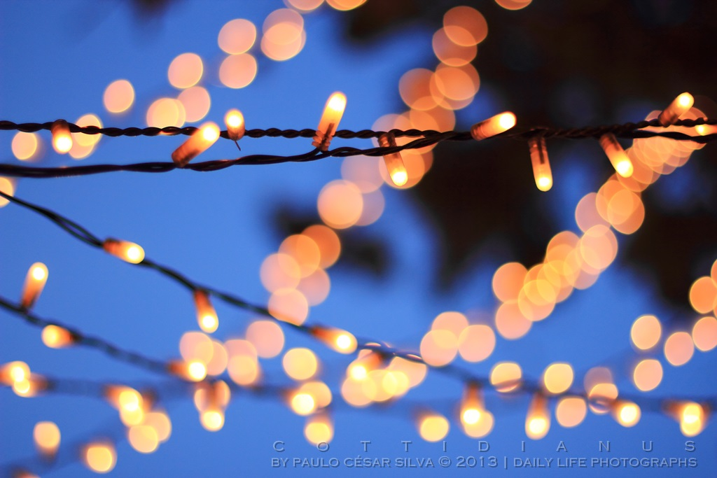 """Christmas Lights"" by Paulo César Silva"
